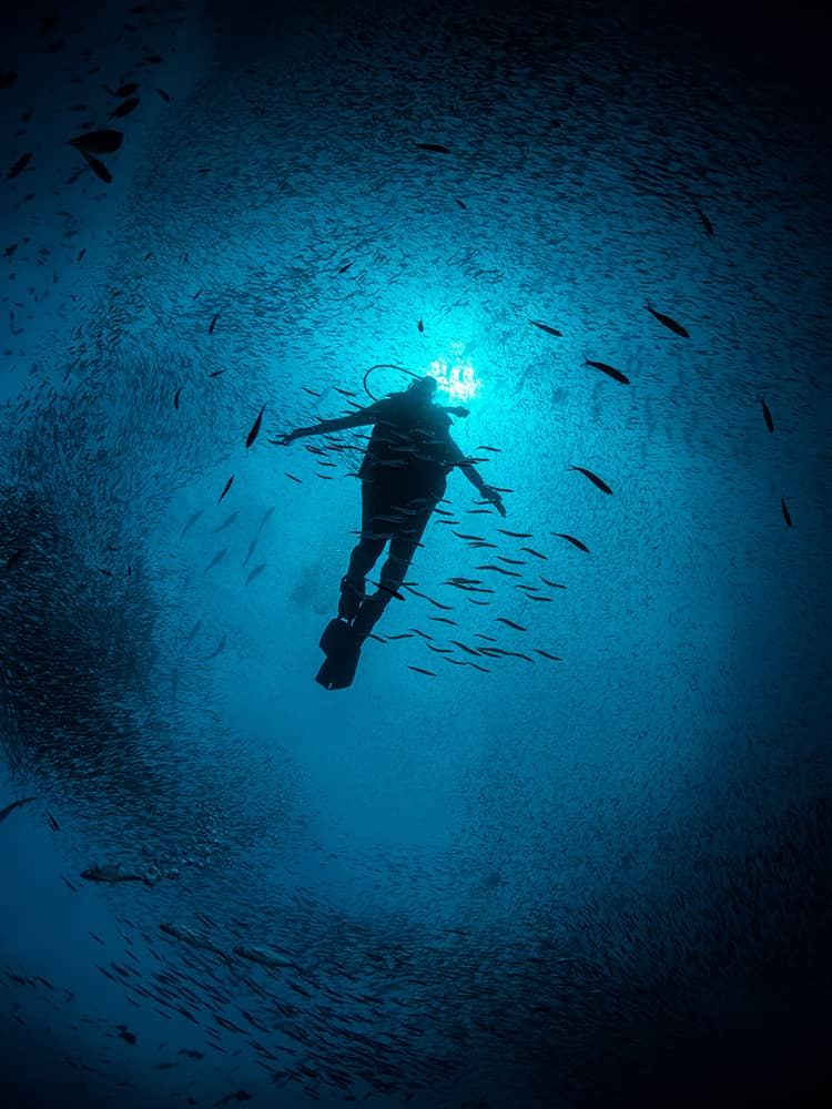 Silhouette of a diver.